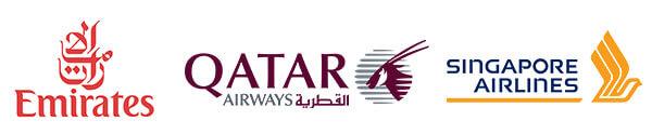flight logo 2