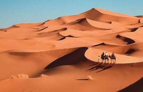Maroco_6