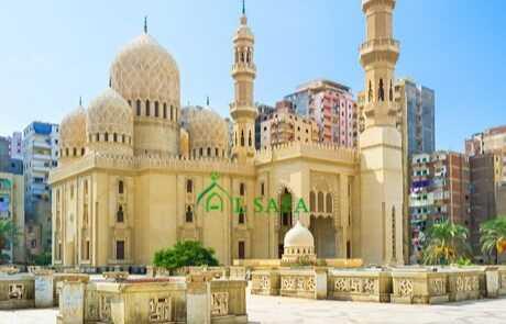 Mesir 5